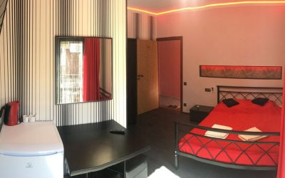 Апартаменты 2-х местный «Делюкс»